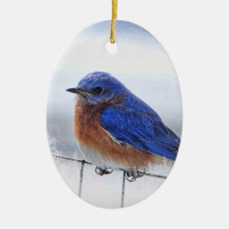 Ornement d'ovale d'oiseau bleu