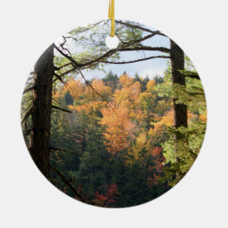 Ornement du New Hampshire 7729