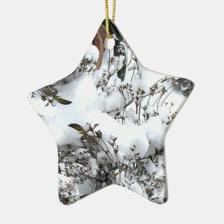 Ornement Étoile En Céramique Abrégé sur neige