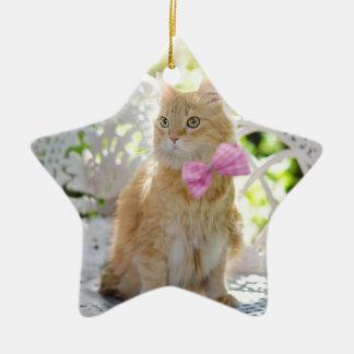 Ornement Étoile En Céramique Animal de compagnie félin de soleil d'été de Kitty