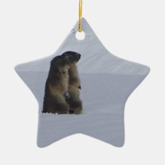Ornement Étoile En Céramique animaux marmottes sauvage