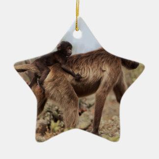 Ornement Étoile En Céramique Babouin femelle de gelada avec un bébé