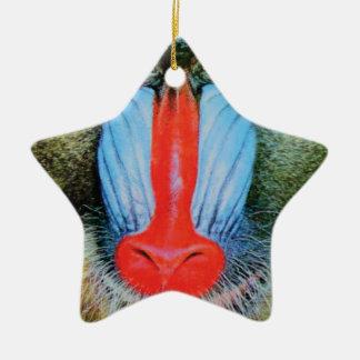 Ornement Étoile En Céramique babouin flairé rouge