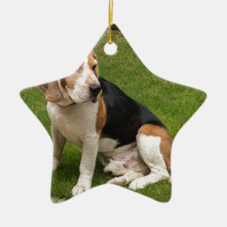 Ornement Étoile En Céramique Beagle