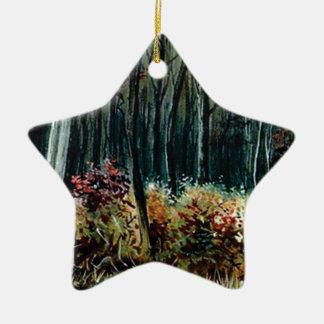 Ornement Étoile En Céramique beauté dans les bois