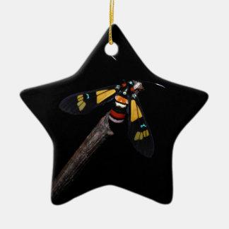 Ornement Étoile En Céramique Belle mite d'arc-en-ciel (foletti d'Euchromia)