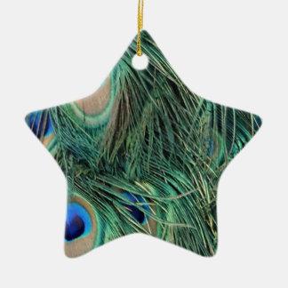 Ornement Étoile En Céramique Belles plumes de paon