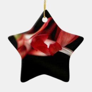 Ornement Étoile En Céramique Cactus de Noël rouge