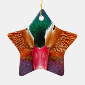 Ornement Étoile En Céramique canard #2