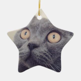 Ornement Étoile En Céramique chat