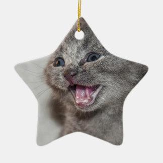 Ornement Étoile En Céramique Chaton de gris de Miaowing