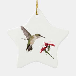 Ornement Étoile En Céramique Colibri et fleur