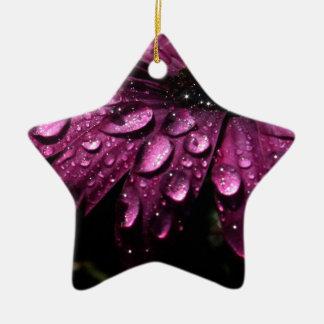 Ornement Étoile En Céramique conception florale d'art de baisses de pluie