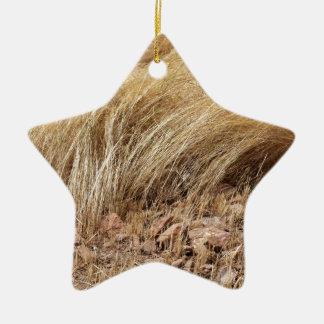 Ornement Étoile En Céramique Détail d'un champ de teff pendant la récolte