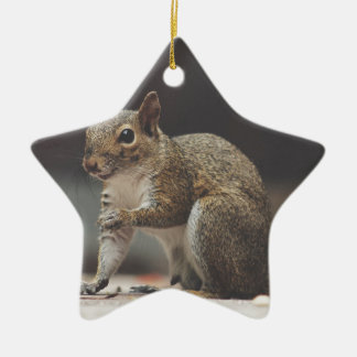 Ornement Étoile En Céramique écureuil