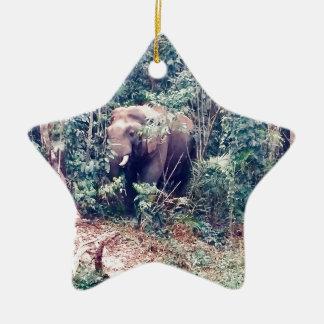 Ornement Étoile En Céramique Éléphant en Thaïlande