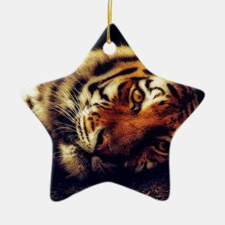 Ornement Étoile En Céramique Faune animale de tigre reposant le macro plan