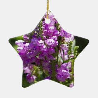 Ornement Étoile En Céramique Fleur obéissante ou fleur de dragon