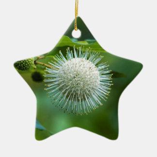 Ornement Étoile En Céramique Fleur sauvage de Bush de bouton de l'Alabama