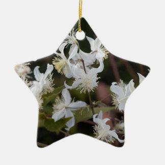 Ornement Étoile En Céramique Fleurs de joie de voyageur (brachiata de