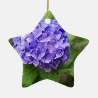 Ornement Étoile En Céramique Fleurs d'un hortensia de Français (macrophyl