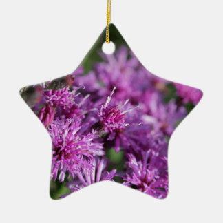 Ornement Étoile En Céramique Fleurs sauvages géants pourpres d'herbe de