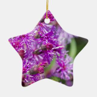 Ornement Étoile En Céramique Fleurs sauvages grands d'herbe de Saint-Jacques