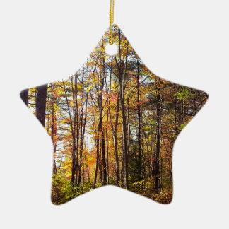 Ornement Étoile En Céramique Forêt d'automne du New Hampshire