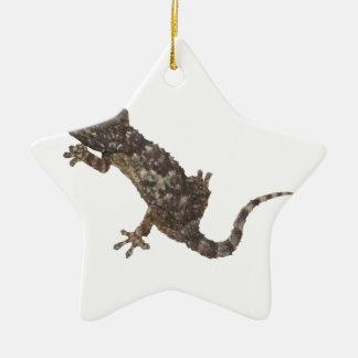 Ornement Étoile En Céramique gecko