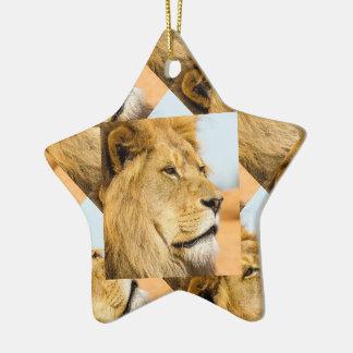 Ornement Étoile En Céramique Grand lion regardant loin