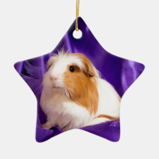 Ornement Étoile En Céramique guinea pig