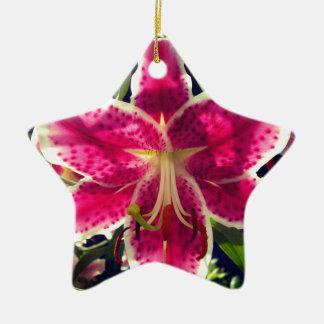 Ornement Étoile En Céramique Hémérocalle rose