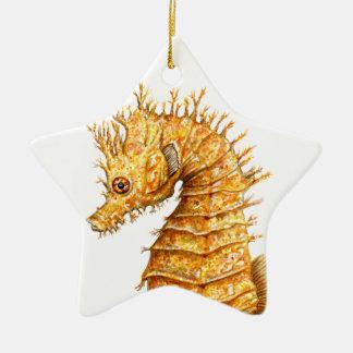 Ornement Étoile En Céramique Hippocampe de hippocampe d'hippocampe