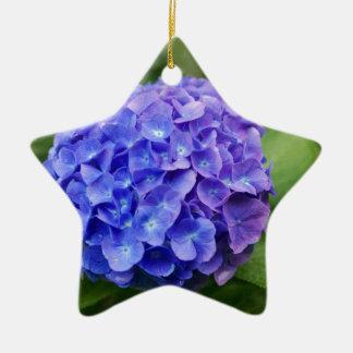 Ornement Étoile En Céramique Hortensia français (macrophylla d'hortensia)