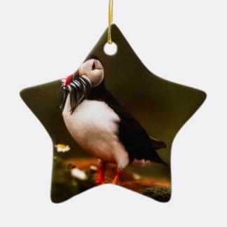Ornement Étoile En Céramique Île animale d'Océan atlantique de faune d'oiseau