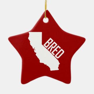 Ornement Étoile En Céramique La Californie a multiplié