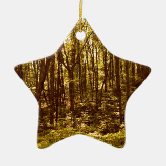 Ornement Étoile En Céramique La forêt montre du doigt