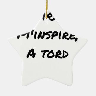 Ornement Étoile En Céramique L'ASPIRATEUR M'INSPIRE À TORT - Jeux de mots