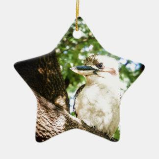 Ornement Étoile En Céramique L'Australie mignonne Kookaburra