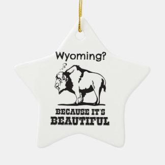 Ornement Étoile En Céramique Le Wyoming ? Puisqu'il est beau
