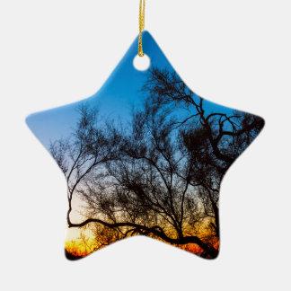 Ornement Étoile En Céramique Lever de soleil de silhouette d'arbre de Palo