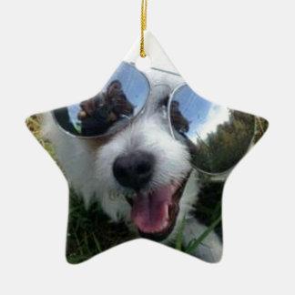Ornement Étoile En Céramique Lunettes de soleil l'AVENIR LUMINEUX de chien pour