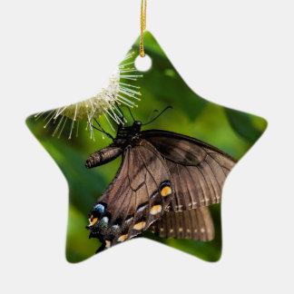 Ornement Étoile En Céramique Machaon femelle foncé de tigre sur le fleur