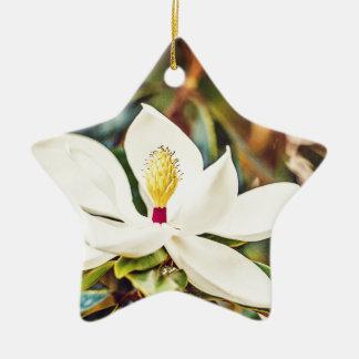 Ornement Étoile En Céramique Magnolia magnifique du Mississippi