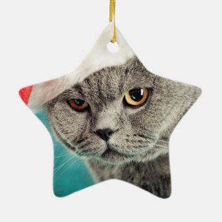Ornement Étoile En Céramique Noël gris de chat - chat de Noël - chat de chaton