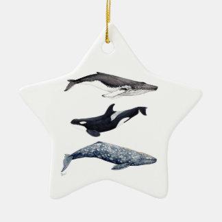 Ornement Étoile En Céramique Orque, baleine bossue et baleine gris