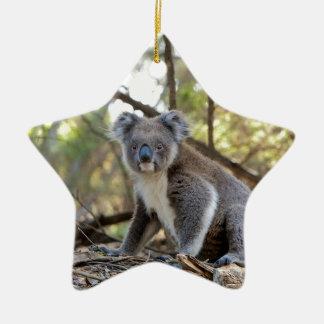 Ornement Étoile En Céramique Ours de koala gris et blanc