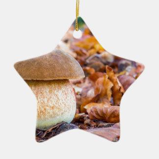 Ornement Étoile En Céramique Pain d'écureuil de champignon avec le feuille dans