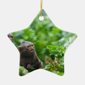 Ornement Étoile En Céramique Paires de singes pygméens