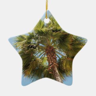 Ornement Étoile En Céramique Paume tropicale